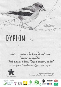 DYPLOM_www