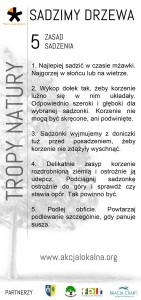 Ulotka_TP
