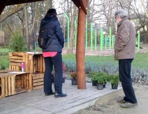 Dołek_Sadzimy-drzewa_01